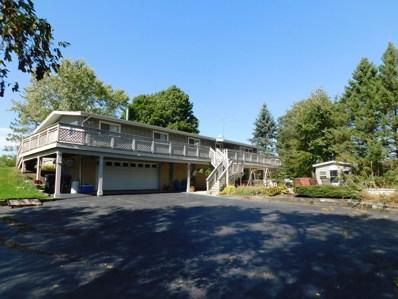 7737 Barnard Mill Road, Richmond, IL 60071 - #: 10133384