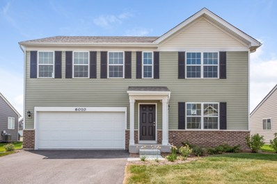 6010 Autumn Oaks Drive, Joliet, IL 60431 - MLS#: 10133528