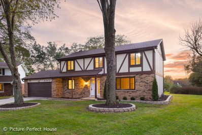 124 Tanager Court, Naperville, IL 60565 - MLS#: 10133568