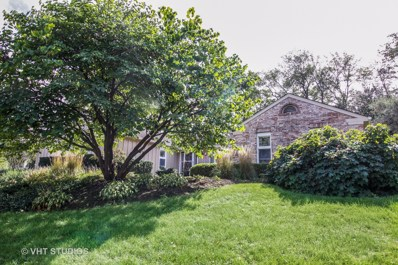1401 Golden Bell Court, Downers Grove, IL 60515 - #: 10133973
