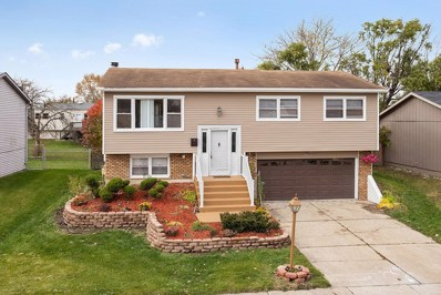 20066 Orchard Avenue, Lynwood, IL 60411 - #: 10134734