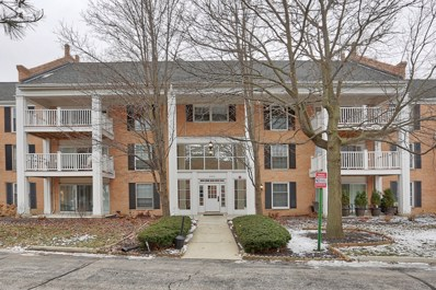 5500 Carriageway Drive UNIT 305, Rolling Meadows, IL 60008 - #: 10134748