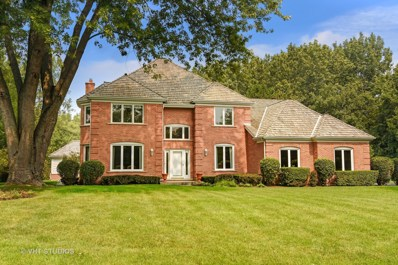 1398 Burnside Court, Long Grove, IL 60047 - #: 10135149