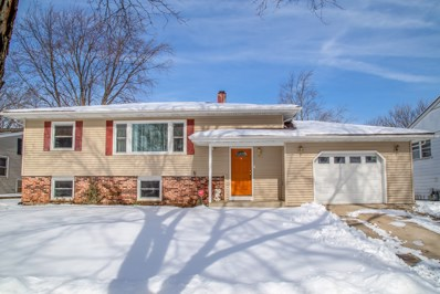 1000 Beechwood Road, Buffalo Grove, IL 60089 - #: 10135306