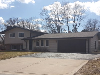 119 Valley View Drive, Algonquin, IL 60102 - #: 10135351