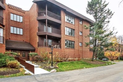 175 Boardwalk Place UNIT 301, Park Ridge, IL 60068 - #: 10135378