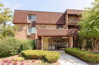 910 E Old Willow Road UNIT 302, Prospect Heights, IL 60070 - MLS#: 10135839