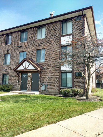 197 Gregory Street UNIT 13, Aurora, IL 60504 - MLS#: 10136016