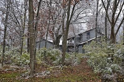19831 Woodside Drive, New Lenox, IL 60451 - #: 10136585