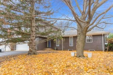 23357 W Feeney Drive, Plainfield, IL 60586 - MLS#: 10136919