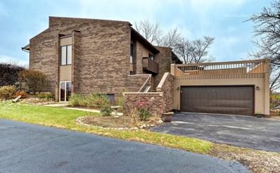 331 S Dominion Drive, Wood Dale, IL 60191 - #: 10136927