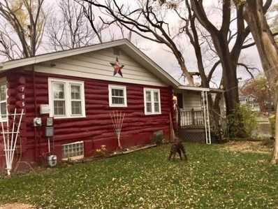 705 S Lakeview Drive, Lowell, IN 46356 - MLS#: 10136967