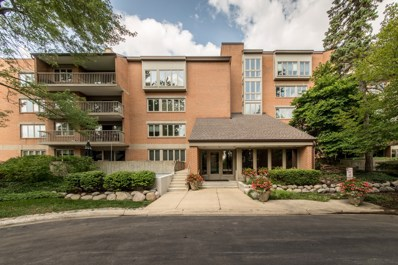 44 Park Lane UNIT 134, Park Ridge, IL 60068 - #: 10137723