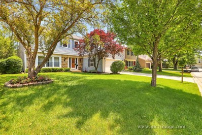 209 Crabtree Lane, Vernon Hills, IL 60061 - MLS#: 10138662