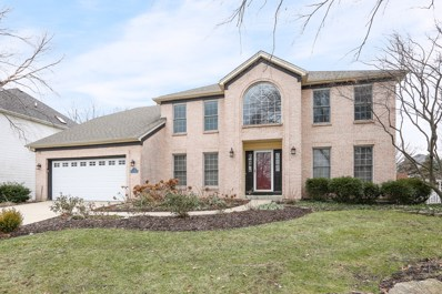 2620 Wild Timothy Road, Naperville, IL 60564 - MLS#: 10138672