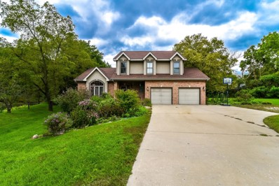 38924 N Cedar Valley Drive, Lake Villa, IL 60046 - MLS#: 10138728