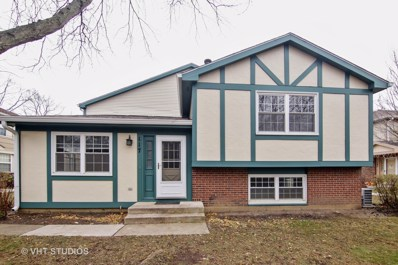 117 Lindenwood Court UNIT 117, Vernon Hills, IL 60061 - MLS#: 10138967
