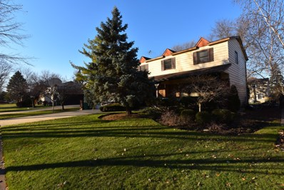 172 Downing Road, Buffalo Grove, IL 60089 - MLS#: 10139073