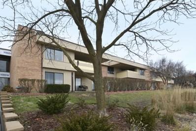 1265 N Sterling Avenue UNIT 113, Palatine, IL 60067 - MLS#: 10139119