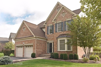55 Open Parkway NORTH, Hawthorn Woods, IL 60047 - #: 10139495