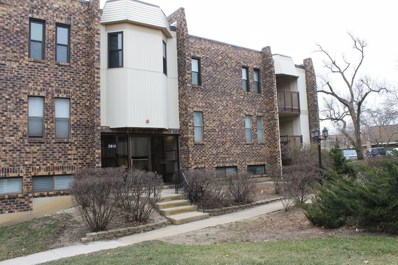 2013 Country Club Drive UNIT 14, Woodridge, IL 60517 - MLS#: 10139898