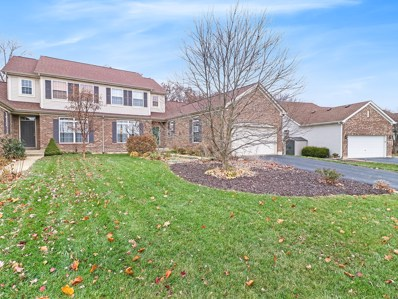 25910 W Timber Ridge Drive, Channahon, IL 60410 - #: 10140140
