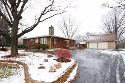 118 Crystal Lake Road, Lake In The Hills, IL 60156 - #: 10140215