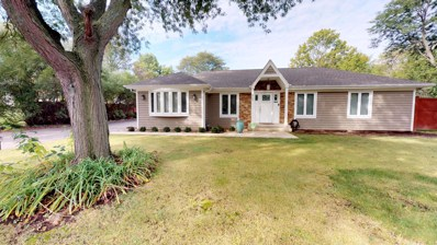 812 N Maple Street, Prospect Heights, IL 60070 - #: 10140336