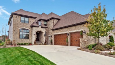 3304 Club Court, Naperville, IL 60564 - #: 10140399