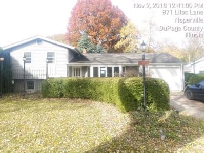 867 Lilac Lane, Naperville, IL 60540 - #: 10140417