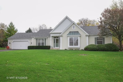 729 Pimlico Parkway, Sleepy Hollow, IL 60118 - #: 10140591