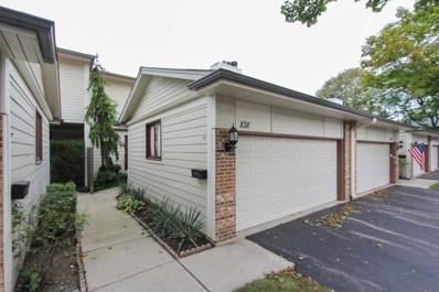 838 W Bluebird Street, Deerfield, IL 60015 - #: 10140781