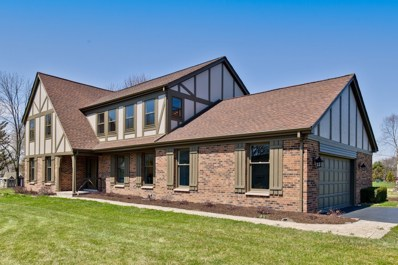 29812 N Borde Court, Libertyville, IL 60048 - #: 10141197