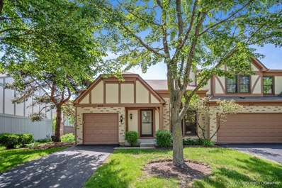 4553 Topaz Drive, Hoffman Estates, IL 60192 - #: 10141225
