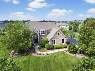 4135 River View Drive, St. Charles, IL 60175 - #: 10141591