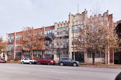 4101 S Michigan Avenue UNIT 207, Chicago, IL 60653 - #: 10141606