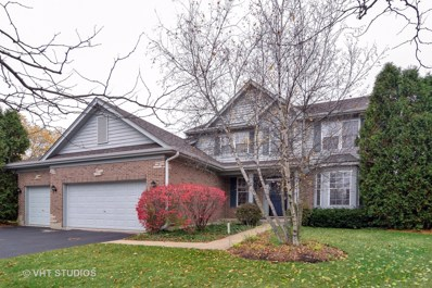27 S Chestnut Court, Hawthorn Woods, IL 60047 - #: 10141690