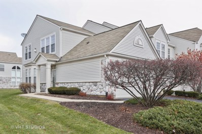 24928 Franklin Lane, Plainfield, IL 60585 - #: 10141763
