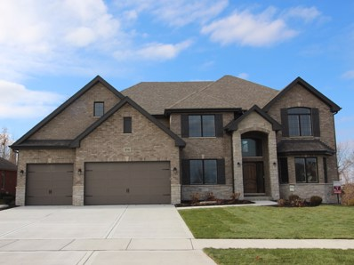 20346 Grand Traverse Drive, Frankfort, IL 60423 - MLS#: 10141836