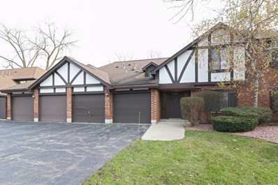 11201 Cottonwood Drive UNIT 20D, Palos Hills, IL 60465 - #: 10141986
