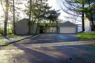 4628 Stonewall Avenue, Downers Grove, IL 60515 - #: 10142039