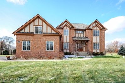 8301 Carriage Lane, Spring Grove, IL 60081 - #: 10142155