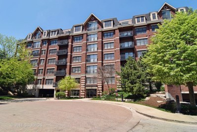 255 E Liberty Drive UNIT 408, Wheaton, IL 60187 - #: 10142187