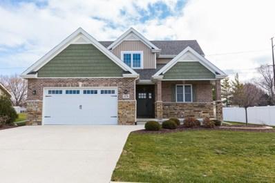 1270 Eagle Bluff Drive, Bourbonnais, IL 60914 - #: 10142353
