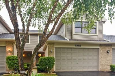 529 N Walden Drive, Palatine, IL 60067 - MLS#: 10142729
