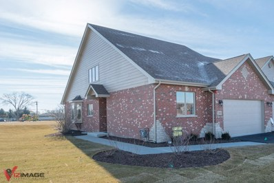 15043 S Preserve Drive, Lockport, IL 60441 - #: 10142819