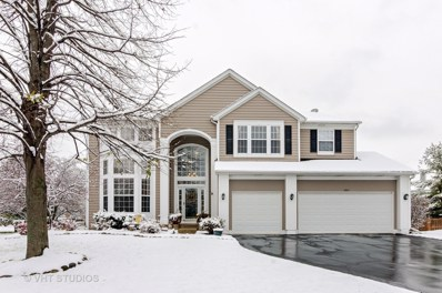 1804 Louisville Lane, Crystal Lake, IL 60014 - #: 10143088