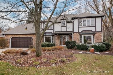 173 Green Leaf Drive, Oak Brook, IL 60523 - #: 10143374