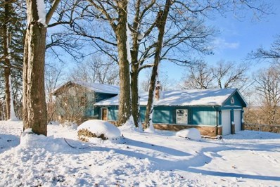 218 Baron Drive, Spring Grove, IL 60081 - #: 10143398