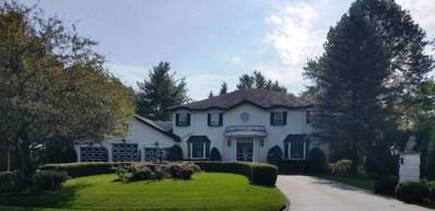 203 Viola Lane, Prospect Heights, IL 60070 - #: 10143510
